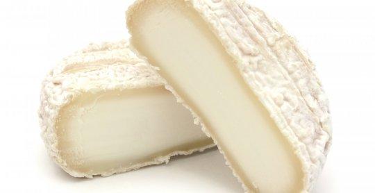 Picodon fameux fromage de chèvre français